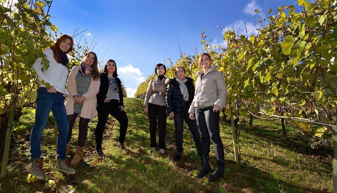 Mujeres en el viñedo